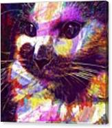 Cat Head Face Macro Close Up  Canvas Print
