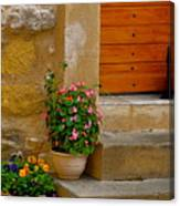 Cat In Capestang France Canvas Print