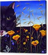 Cat In Flower Field Canvas Print