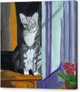 Cat In Window Canvas Print