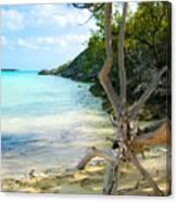 Cat Island Cove Canvas Print