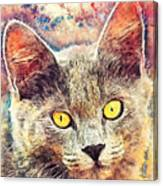 Cat Kiara Canvas Print