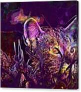 Cat Kitten Mieze Tiger Cat  Canvas Print
