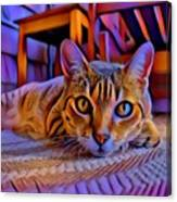 Cat Laying On Braided Rug Canvas Print