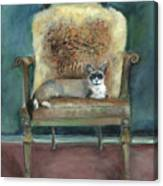 Cat On A Chair Canvas Print