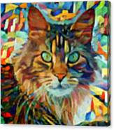 Cat On Colors Canvas Print