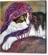 Cat Painting  Charlie The Pirate Canvas Print