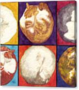 Cat Planets Canvas Print