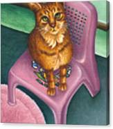 Cat Sitting On A Painted Chair Canvas Print