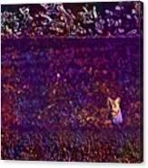Cat Sunshine Caught View Portrait  Canvas Print
