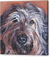 Catalan Sheepdog Canvas Print