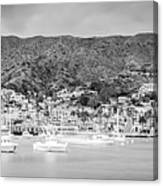 Catalina Island Avalon Bay Black And White Panorama Photo Canvas Print