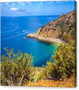 Catalina Island Lover's Cove Picture Canvas Print