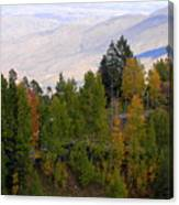 Catalina Mountains In The Fall Canvas Print