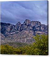 Catalina Mountains P1 Canvas Print