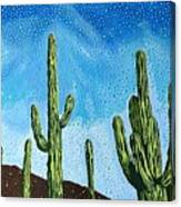 Catalina State Park Canvas Print