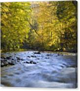 Cataloochee Valley River Canvas Print