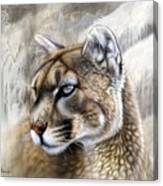Catamount Canvas Print