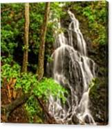 Cataract Falls In Great Smoky Mountains National Park Canvas Print