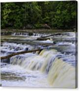 Cataract Falls Phase 1 Canvas Print