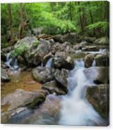 Catawba Stream In Pisgah National Forest Canvas Print