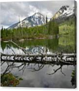 Cathedral Group Reflection On String Lake Canvas Print