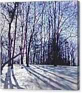 Cathedral Skies Canvas Print