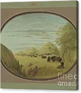 Catlin And Two Companions Shooting Buffalo Canvas Print