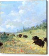 Catlin: Elk & Buffalo Canvas Print