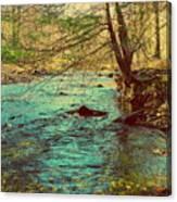 Catoctin Spring Canvas Print