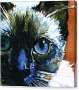 Cats Eyes 13 Canvas Print