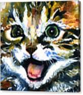 Cats Eyes 15 Canvas Print