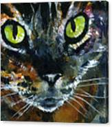 Cats Eyes 16 Canvas Print