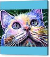 Cats Eyes 2 Canvas Print