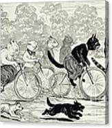 Cats In A Bicycle Race, Hyde Park, 1896 Canvas Print