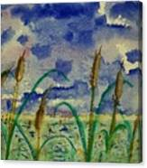 Cattails And Moonlight Canvas Print