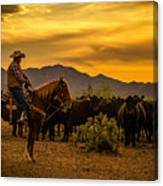 Cattle Drive 41 Canvas Print