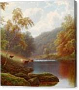 Cattle Watering Along The River Wharfe Canvas Print