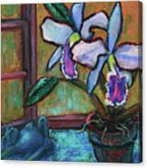 Cattleya Orchid And Frog By The Window Canvas Print