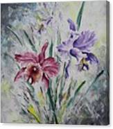 Cattleya Canvas Print