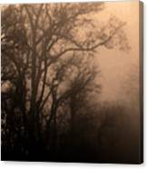 Caught Between Light And Dark Canvas Print