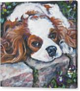 Cavalier King Charles Spaniel In The Pansies  Canvas Print