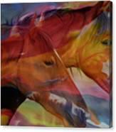 Cavalos Canvas Print