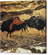 Cave Art: Bison Canvas Print