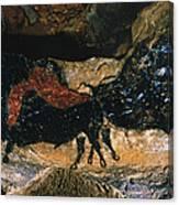Cave Drawing/lascaux Canvas Print