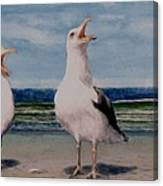 Caw Cuss Canvas Print