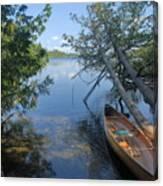 Cedar Strip Canoe And Cedars At Hanson Lake Canvas Print