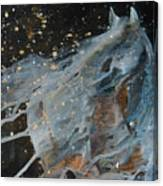 Celestial Stallion  Canvas Print