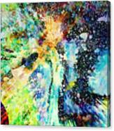 Celestial Xvi Canvas Print