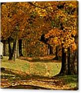Cemetary Road In Autumn Canvas Print